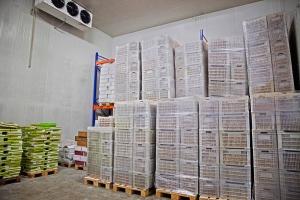 Dried Fruit Storage